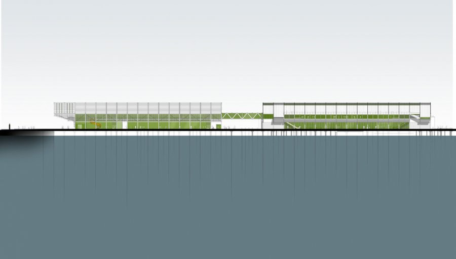 Queens Wharf Competition_Elevation